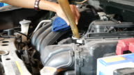 pouring new oil lubricant into the car engine video