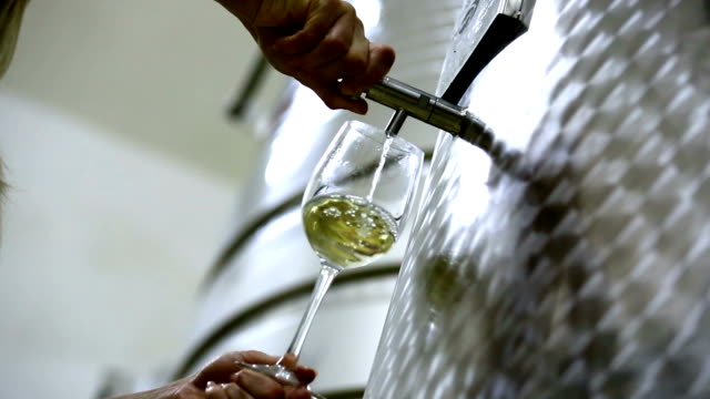 Pouring white wine out of metal tank. video