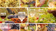 Pouring wine in the vineyard, collage video