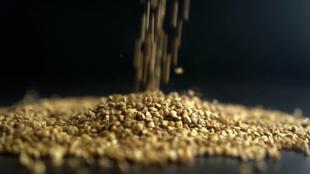pours buckwheat grain. Slow motion video