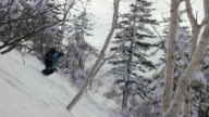 Powder skiing in forrest video