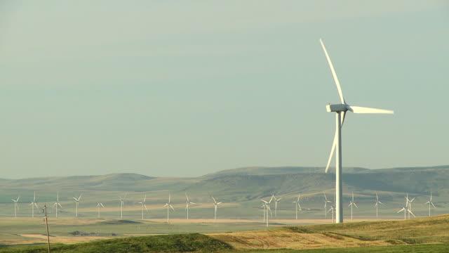 HD: Power Generating Windmills video