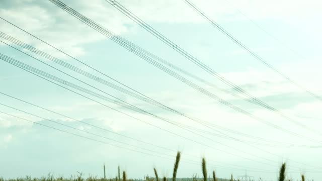 Power line in the field video
