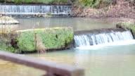 Power of Nature - Beautiful Waterfall in Nature video