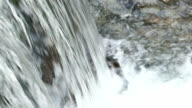 Power of Nature - Magnificent Waterfall in Closeup in a Beautiful Nature video