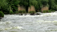 Powerful and rapid mountain river video