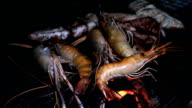prawns and squid on the flaming grill.Seafood barbecue video