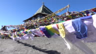 Prayer flags floating in the wind, Leh Ladakh, North India video