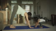 Pregnant mother doing yoga in her home with her toddler video