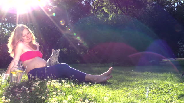 pregnant woman play with cat in sunny park video