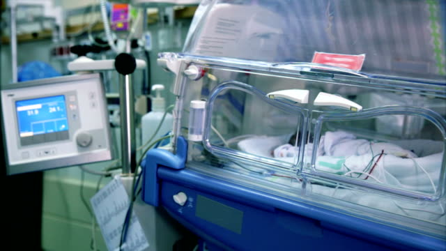 Prematurely born infant lying in incubator video