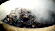 preparation of mussels video