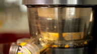 Preparation of orange juice. video