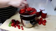 Preparation of tomato puree video