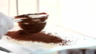 prepare ice cream with professional machine, chocolate flavor video