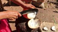 Preparing Coconut Water in Sri Lanka video