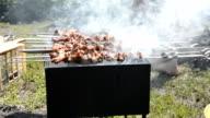 Preparing tasty meat barbeque on skewers video
