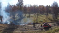 Prescribed Fire being lit along edge of forest video