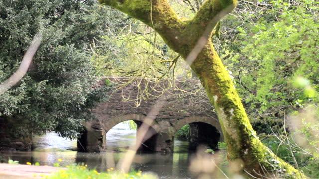 Pretty English Bridge in a Hamlet. video