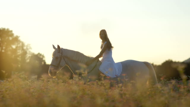 CLOSE UP: Pretty girl riding horse without reins in blooming field at sunset video