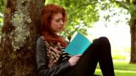 Pretty redhead reading a book in the park video