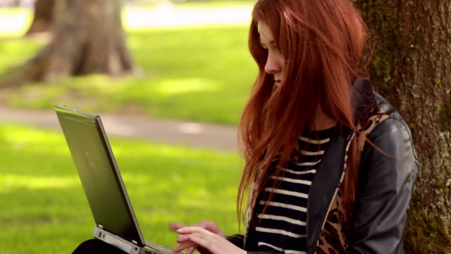 Pretty redhead using laptop in the park video