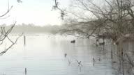 Pretty Winter Lake video