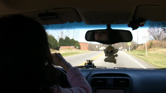 Primping While Driving HD video
