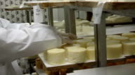 Production of homemade goat cheese video