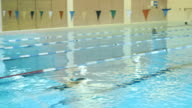 Professional Female Swimmer Jumping Off the Starting Block and Performing the Front Crawl. Camera Follow Her. video