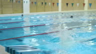 Professional Male Swimmer Jumping Off the Starting Block and Performing the Butterfly Stroke. Camera Follow Him. video