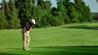 WS Professional Senior Golfer Teeing Off video