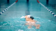 Professional swimmer in the pool. video