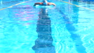Professional swimmer is swimming butterfly in a pool. Butterfly training. video