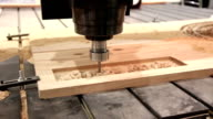 Programmable woodworking machine tool video