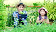 Protect the nature - Young girl and Little girl holding a potted plant in a garden video