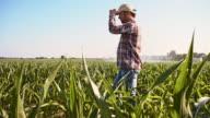 SLO MO Proud farmer in the field video