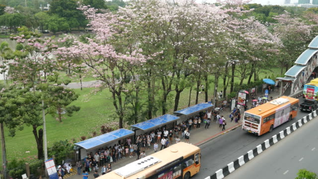 Public bus and park in Bangkok video