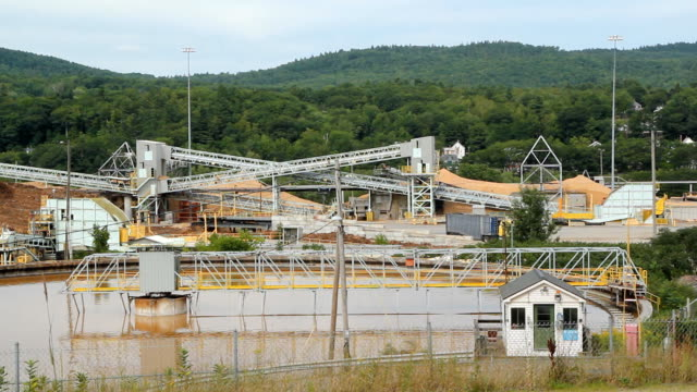 Pulp and paper mill. video