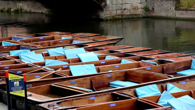 Punts on the river Cam video