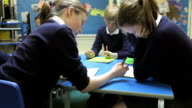 Pupils Working At Table Together video