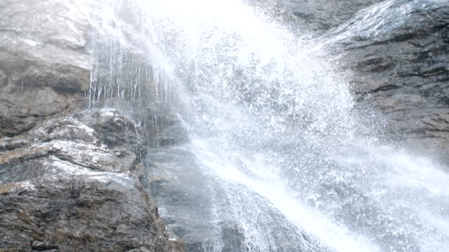 Pure fresh water waterfall in forest in the mountains video