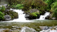 Pure fresh water waterfall in forest video