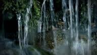 Pure Mountain Stream Water video