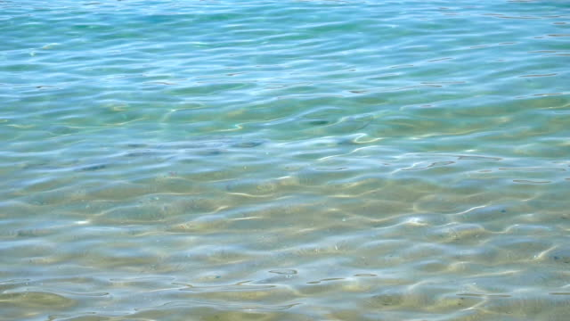 pure transparent sea waves with a sandy bottom video