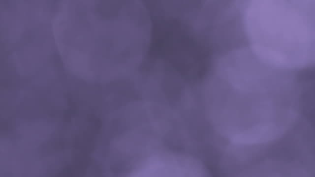 Purple bokeh Loop video