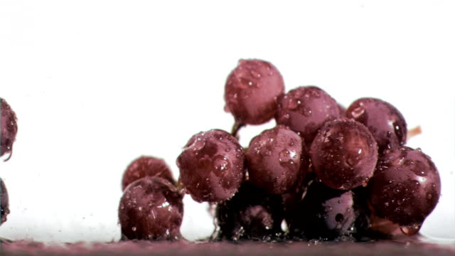 Purple grapes in super slow motion receiving raindrops video