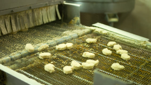 Quality control at a food processing plant video