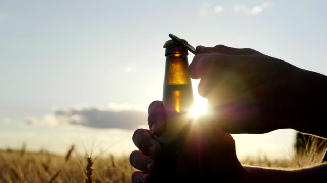 Quench your thirst with a cool beer. Silhouette of the bottle, which is opened at sunset near the wheat fiel video