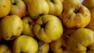 quince in the marketplace,close up video